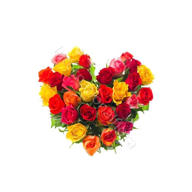 Cuore di Rose di colori misti internationalflora.com