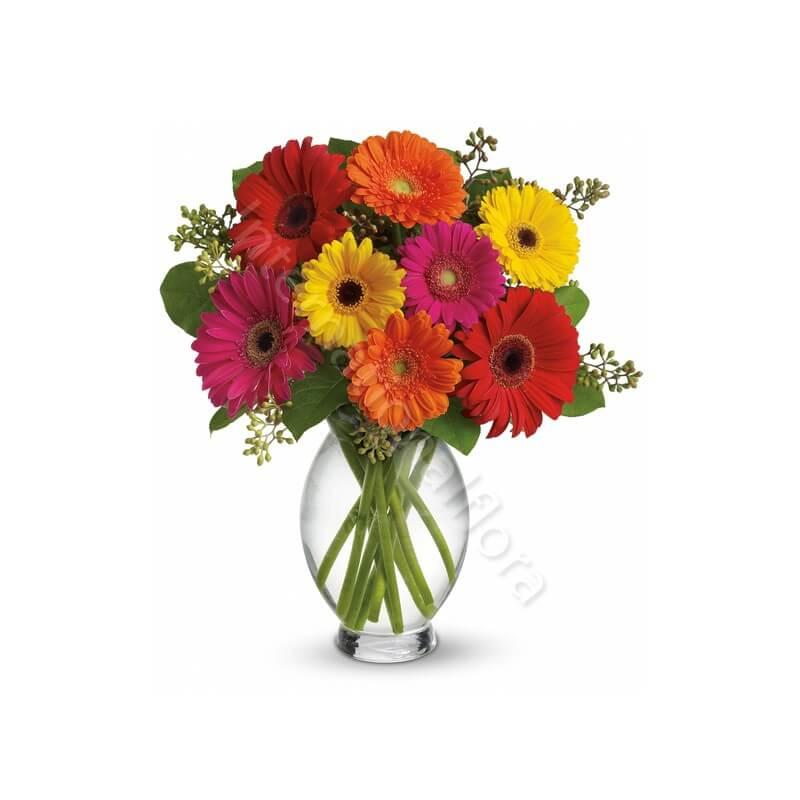 Bouquet di Gerbere colorate internationalflora.com