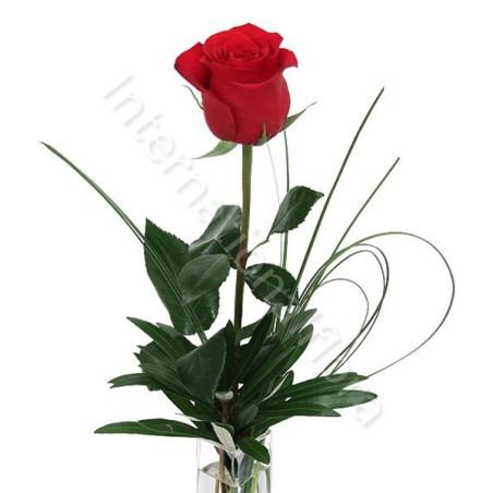 Rose rosse numero preciso