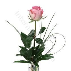 Rose rosa numero preciso