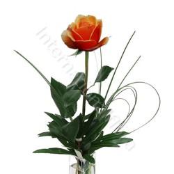 Rose arancio numero preciso