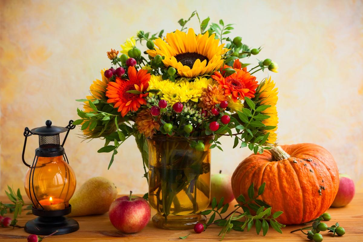Fiori per Halloween: ecco quali scegliere per restare in tema