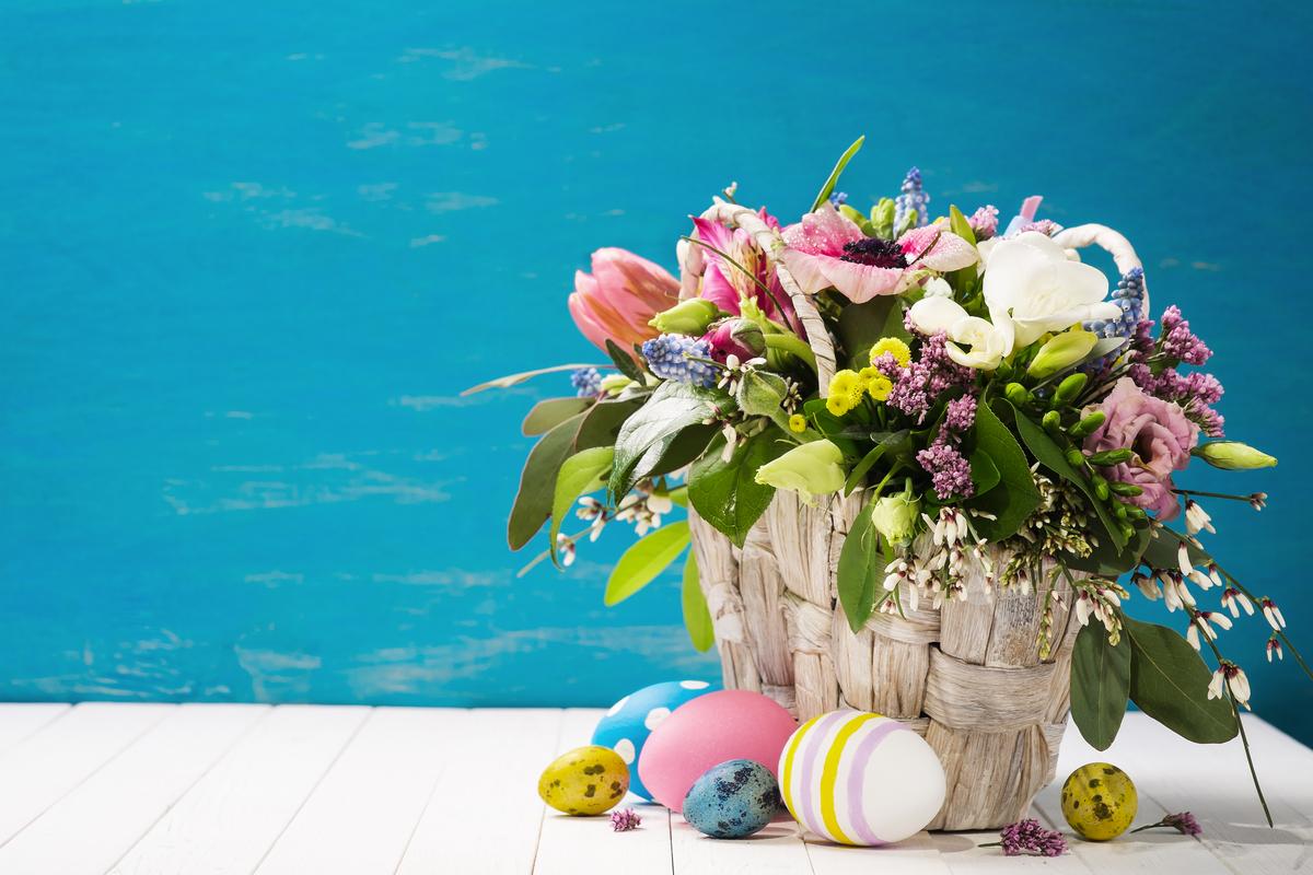 Fiori di Pasqua: quali mettere simbolicamente sul tavolo