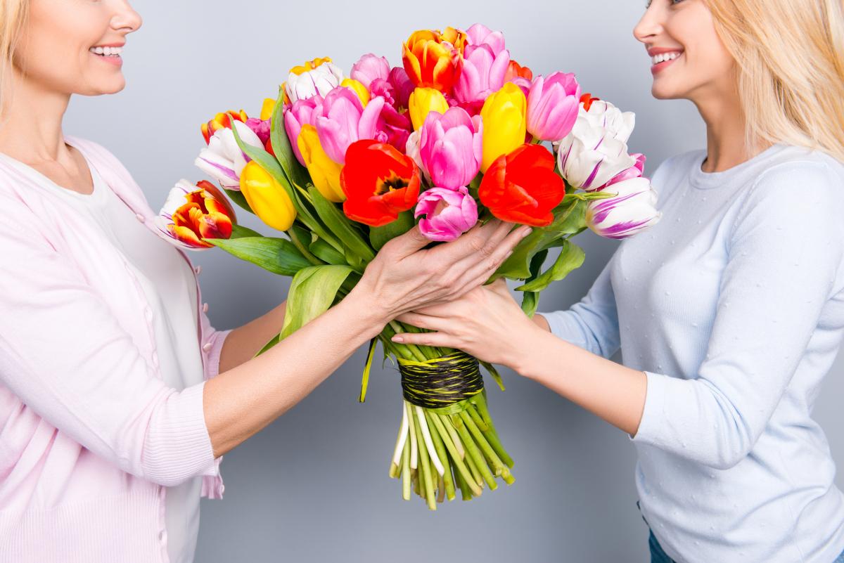 Quanti tipi di tulipani ci sono? Ecco i più belli da regalare