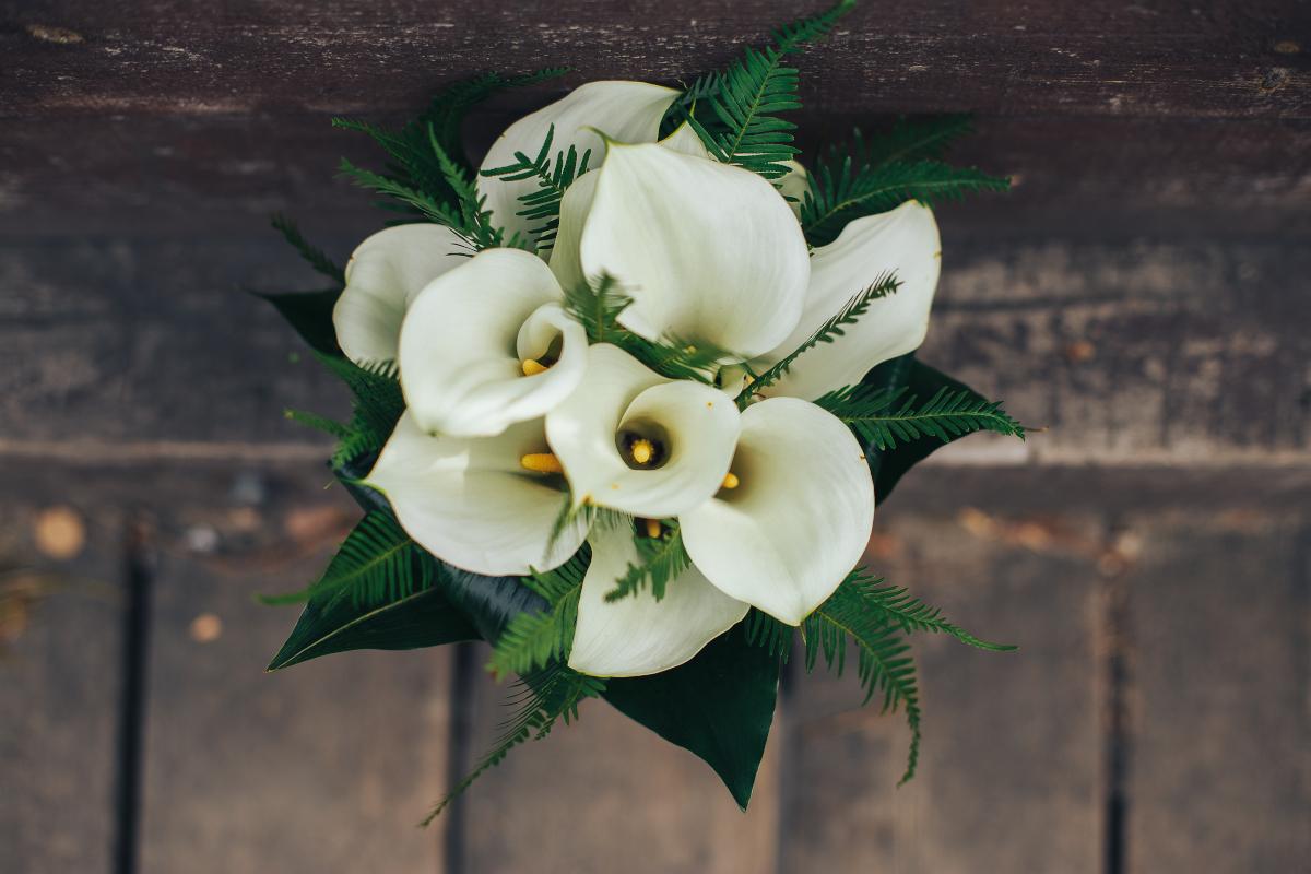 3 fiori da regalare a una sposa per buon auspicio
