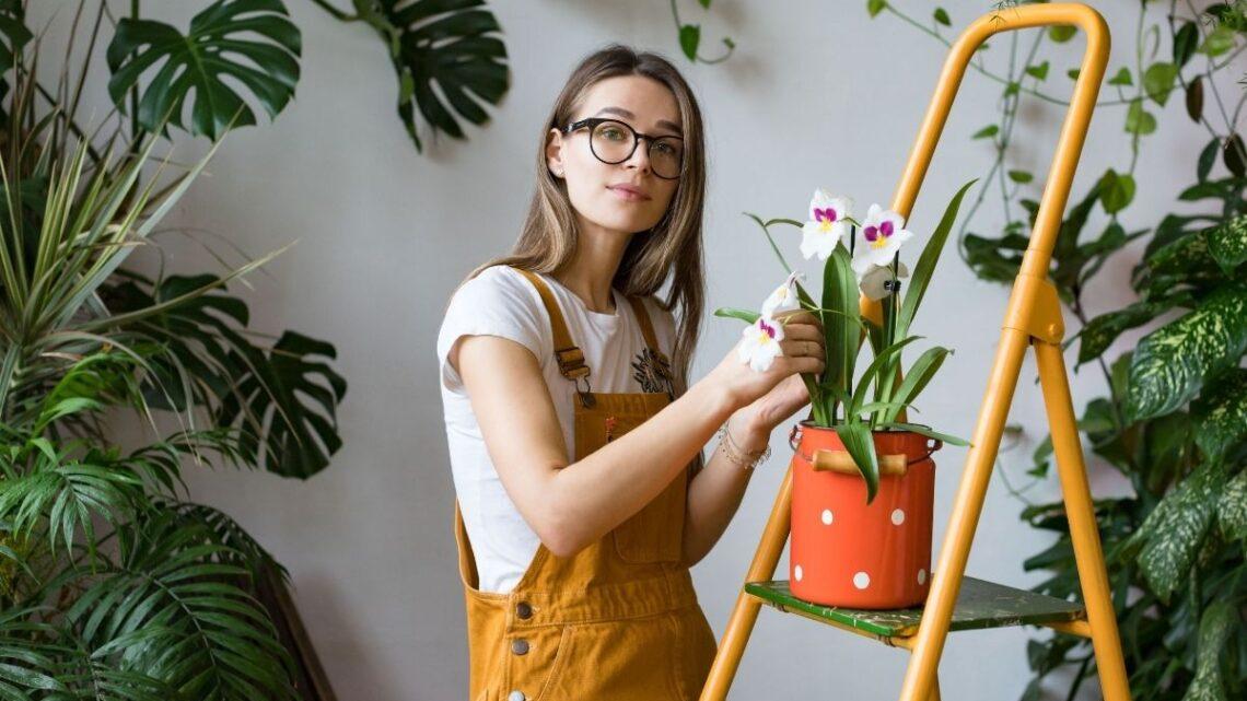 Come riconoscere e combattere i parassiti delle piante fiorifere?